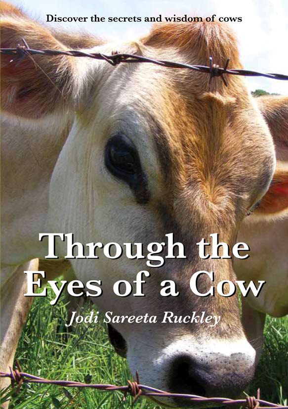 Through the Eyes of a Cow book_image